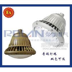华荣同款BAD85防爆高效节能LED灯图片
