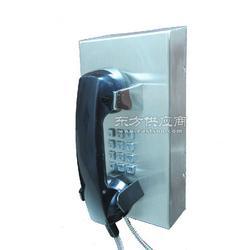 电力核电站防水电话机 IP防水电话机 IP工业防水电话机 防水等级达IP66以上图片