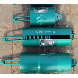 541支撑式变力弹簧组件,变力弹簧组件,润科电力图片