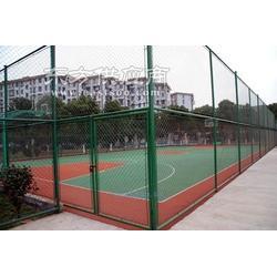 越琪厂家直销PVC包塑围网机场围网,球场围网不褪色不开裂,低图片