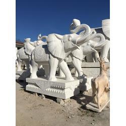 垣古石雕大象 大型汉白玉大象-汉白玉大象图片