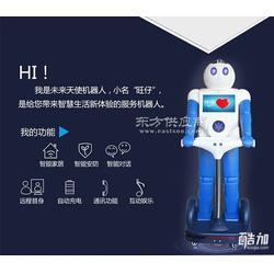 家居智能机器人-家居服务管家图片