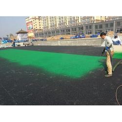 塑胶跑道|塑胶跑道施工|西安康特塑胶(优质商家)图片