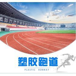 塑膠跑道材料-西安康特塑膠-銅川塑膠跑道圖片
