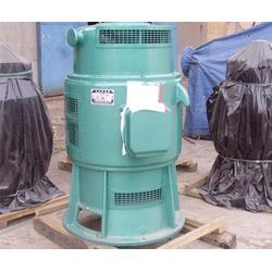 泰山泵业-合肥900ZLB轴流泵图片