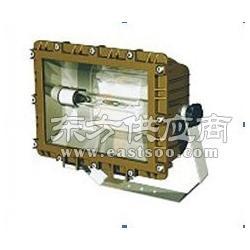 腐泛光灯SBF6109免维护节能防水防尘防腐泛光灯图片