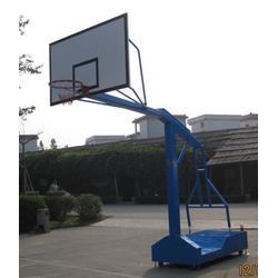 儿童篮球架什么牌子好、金成体育、儿童篮球架图片