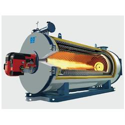 寧波環保型鍋爐,領航生物科技(在線咨詢),環保型鍋爐報價圖片