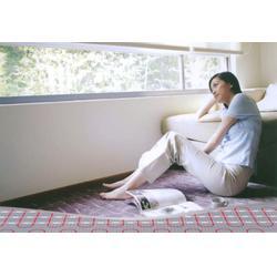 苏州电地暖、苏州电地暖安装费用、苏州康庭冷暖(优质商家)图片