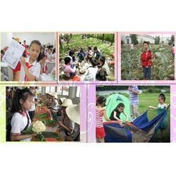 森众童军夏令营-咸安暑期夏令营-暑期夏令营报名方式图片