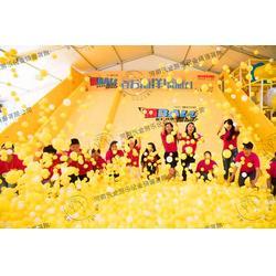 海洋球_河南沃金_海洋球销售图片
