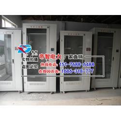 帝智双开门安全工器具柜电力工具柜生产厂家图片