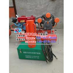 抗洪防汛打桩机,便携式打桩机,小型植桩机图片