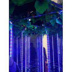 定做镜子迷宫-威海镜子迷宫-紫晨游乐图片