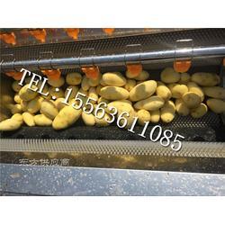 毛刷清洗机 红薯清洗机 土豆去皮机图片