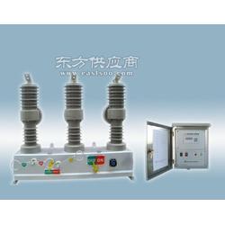 ZCH32-12真空断路器自动重合器祝捷电气图片