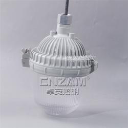 防眩应急泛光灯nfe9112安全高效性价比高图片