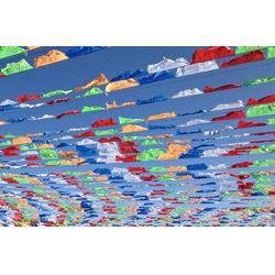 彩旗哪家好、台州彩旗、大海旗帜厂图片