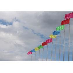 彩旗制作生产,大海旗帜厂,惠州彩旗制作图片