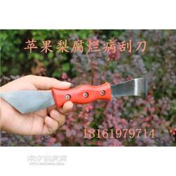 新款腐烂病刮刀园艺用品 苹果腐烂病刮刀图片