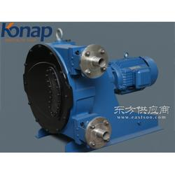 Konap/科耐普KNP40精密rgb软管泵大流量耐腐蚀污水处理软管泵图片