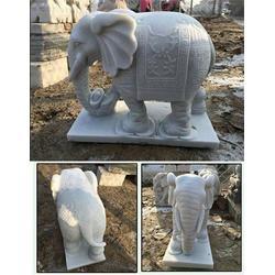 河南石雕象,石材雕刻大象,汉白玉石雕象图片