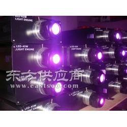 45w同步光纤光源机,带遥控光源机,光纤照明光源图片