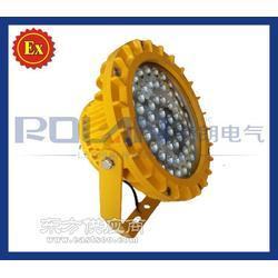 30WLED防爆灯-免维护LED节能防爆灯BDE521图片