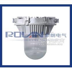 SW7100电厂用全方位防眩泛光工作灯150W/70W/100W图片