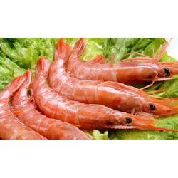 延安冷冻虾,冷冻虾,优鲜港水产大虾(优质商家)图片