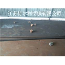 耐磨板-进口-江苏特尔利现货耐磨板图片