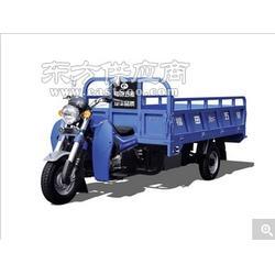 福田五星200ZH-11JM三轮摩托车图片