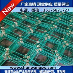 加工定制包塑边坡防护网,质量可靠图片