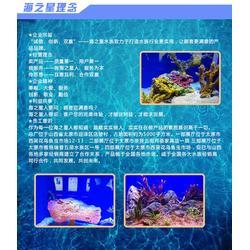 大型鱼缸定做厂家、大型鱼缸定做、海之星水族公司(查看)图片