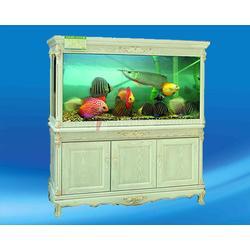 1.5米观赏鱼鱼缸报价_海之星水族公司地址_长治鱼缸图片