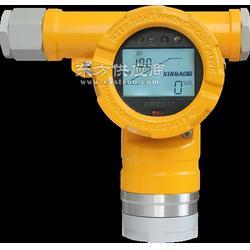 气体探测器 XP3000图片