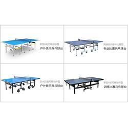 陕西乒乓球桌、双子星体育用品、乒乓球桌 折叠式图片