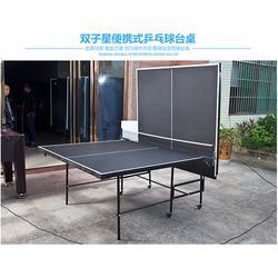 宁夏乒乓球桌,两用乒乓球桌,双子星体育用品图片