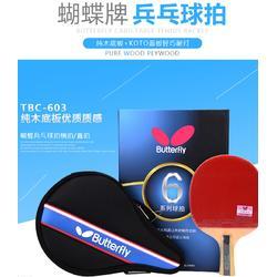 陕西乒乓球桌厂,双子星品牌,儿童乒乓球桌厂图片