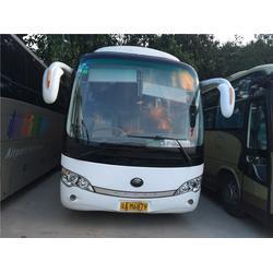 广州大巴车出租、云跑租赁配司机、春游大巴车出租图片