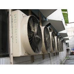 大型锅炉负压风机_巨无霸、800负压风机_锅炉负压风机哪家好图片