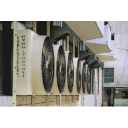 方形负压风机销售商,猪舍方形负压风机,巨无霸图片
