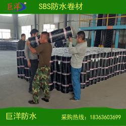 连云港SBS防水卷材,山东巨洋防水,4mmSBS防水卷材图片