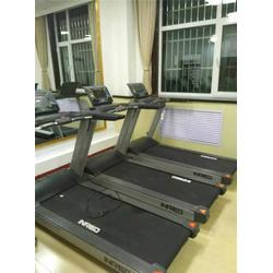 单位健身房工程_尚健体育_单位健身房图片