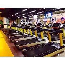 单位健身房|临汾健身房|尚健体育健身房器材(查看)图片
