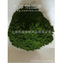 Earnur pet 宠物专用天然绿色海藻粉 帮助色素沉淀 保持鼻部黑色图片