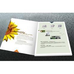 企业画册印刷-画册印刷-精简至上(查看)图片