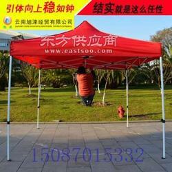 帐篷伞印字效果直销 短袖广告衫图片