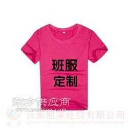 旭涞厂家t恤衫品牌定做述力服装厂是集设计图片