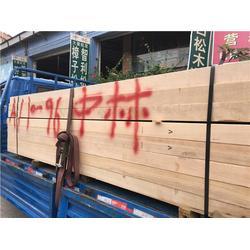 青山铁杉-铁杉-中林鸿锦木业图片
